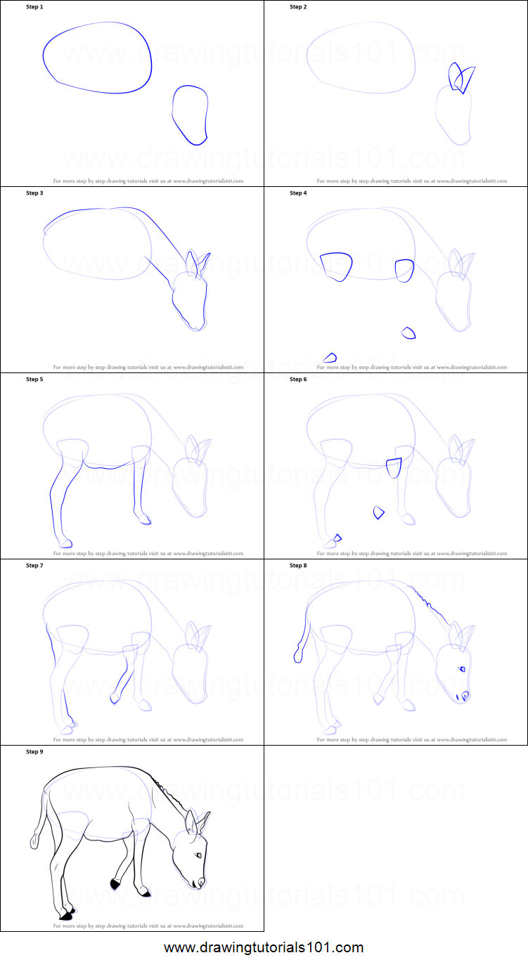How To Draw A Donkey Printable Step By Step Drawing Sheet Drawingtutorials101 Com