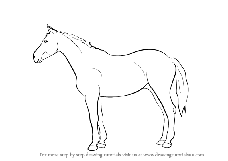 learn how to draw a horse farm animals step by step drawing