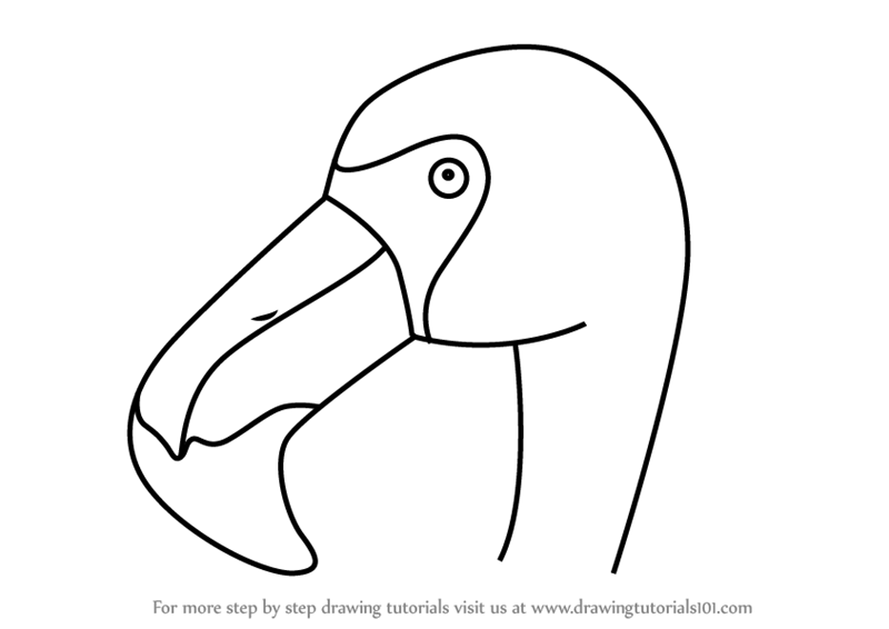 Learn How To Draw A Flamingo Face For Kids Animal Faces For Kids