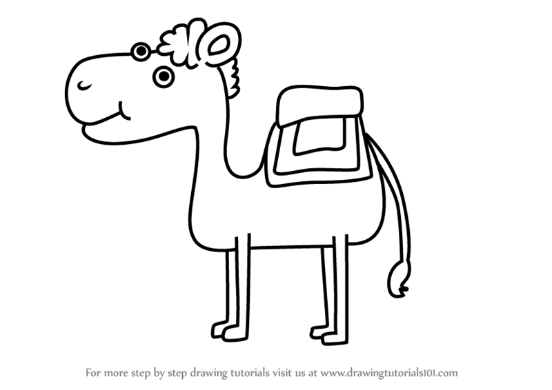 Learn How to Draw a Camel for Kids (Animals for Kids) Step by Step