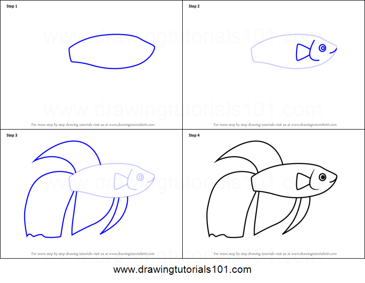How To Draw A Siamese Fighting Fish For Kids Printable Step By Step Drawing Sheet Drawingtutorials101 Com