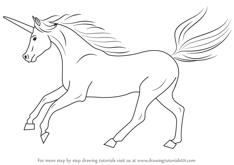 Learn how to draw a unicorn unicorns step by step drawing tutorials