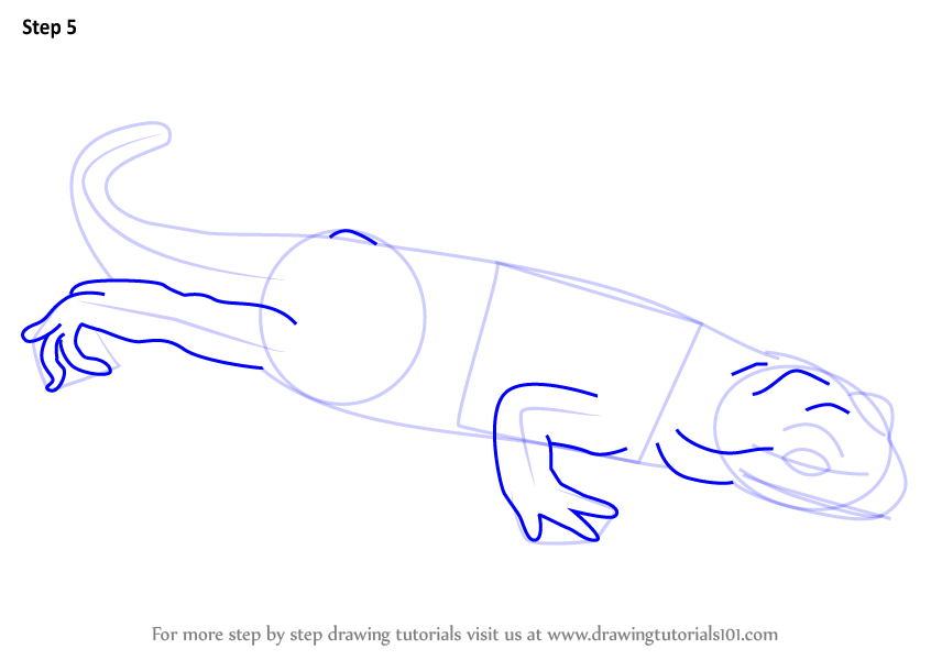 how to draw amphibians step by step