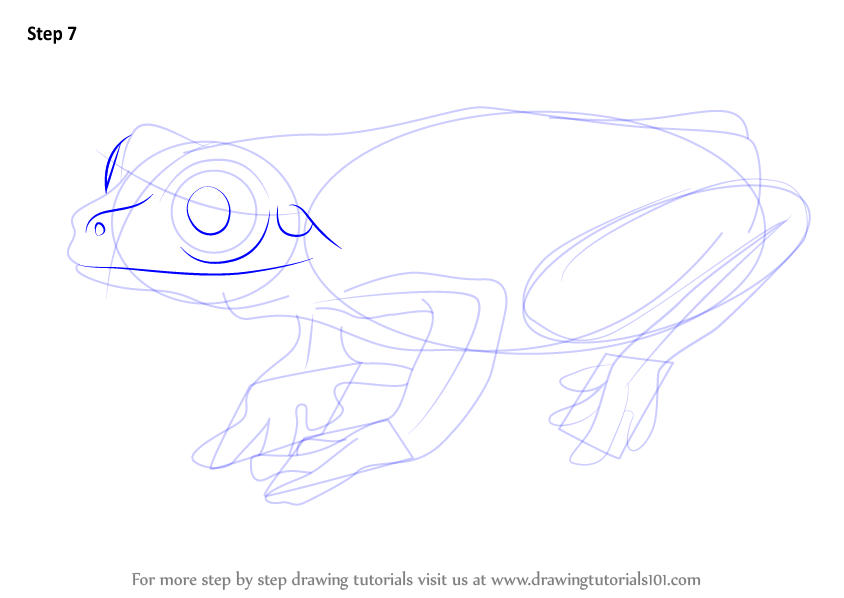 how to draw a tree frog on paper