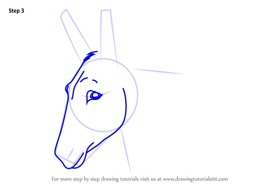 Learn How to Draw a Donkey Face (Animal Faces) Step by ...