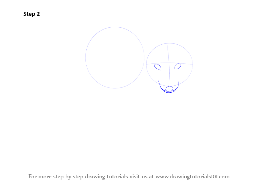how to draw fox face