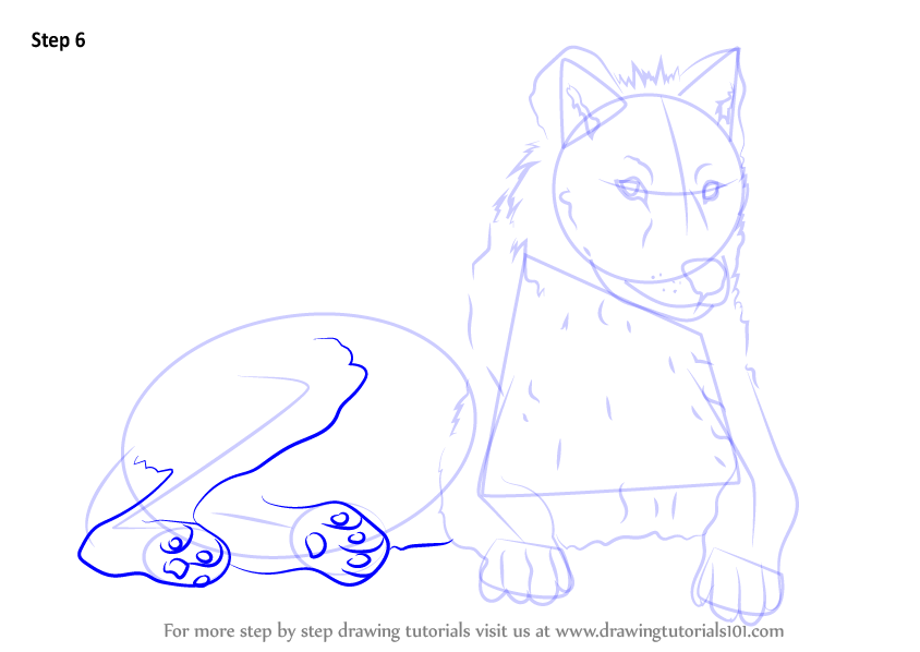 Learn How to Draw an Arctic Wolf
