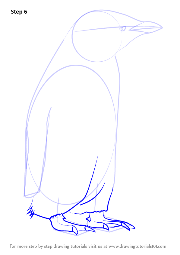 learn how to draw a chinstrap penguin  antarctic animals
