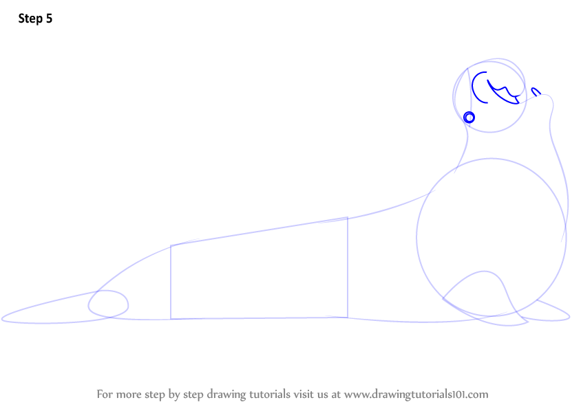 how to draw a elephant seal step by step