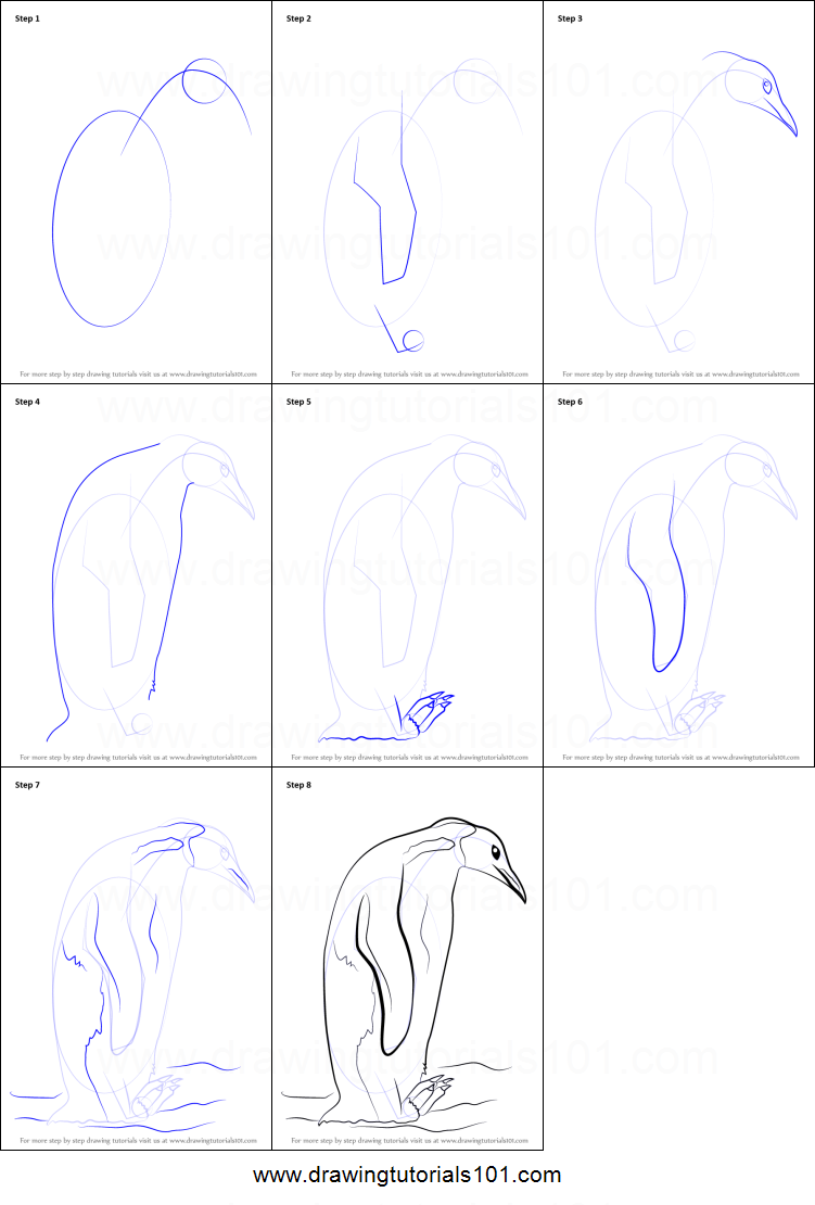 how to draw an emperor penguin printable step by step drawing sheet drawingtutorials101com
