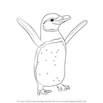 How to Draw a Galapagos Penguin
