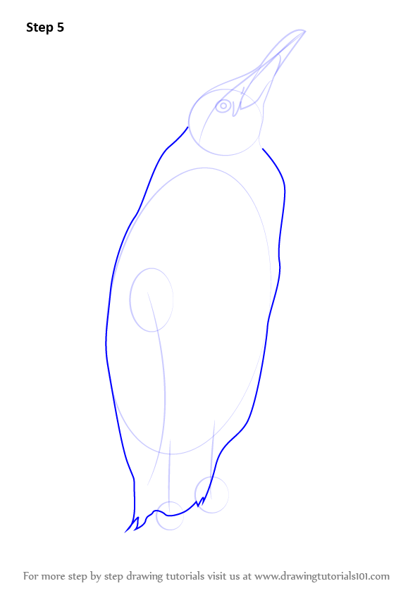 how to draw penguin flippers