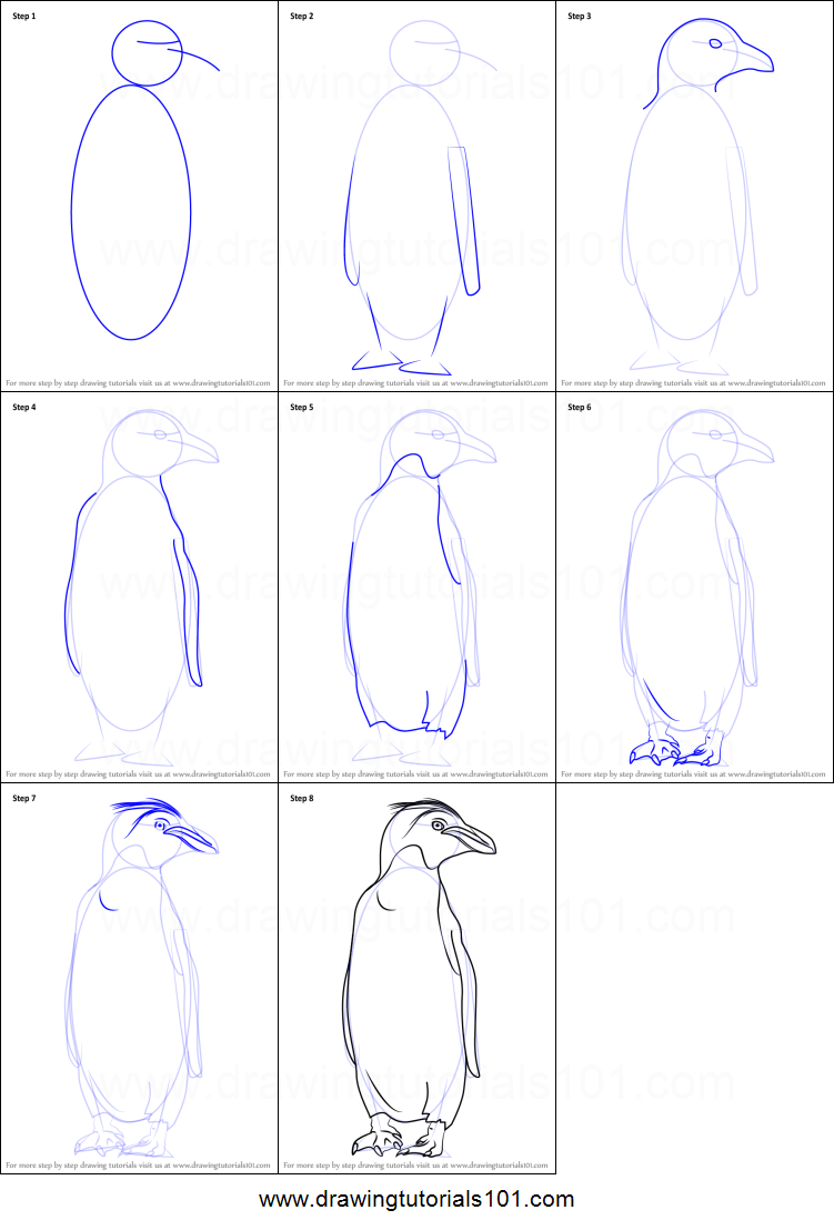 how to draw a macaroni penguin printable step by step