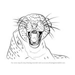 How to Draw a Cheetah Growling