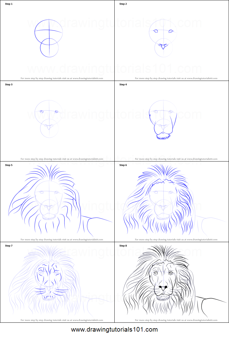 how to draw a lion s face printable step by step drawing sheet