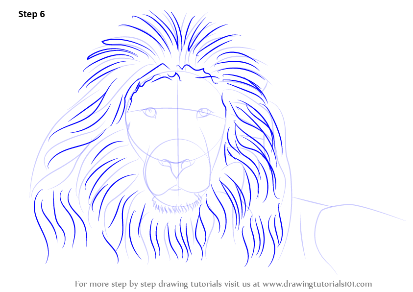 Lions face drawing - photo#27