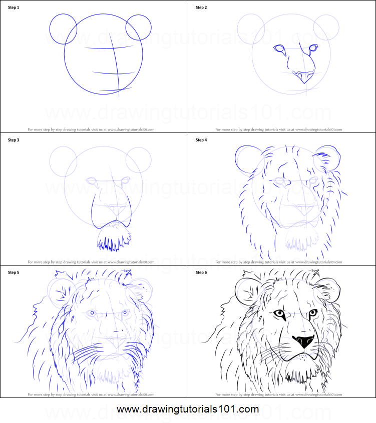 How to draw lion head printable step by step drawing sheet drawingtutorials101 com