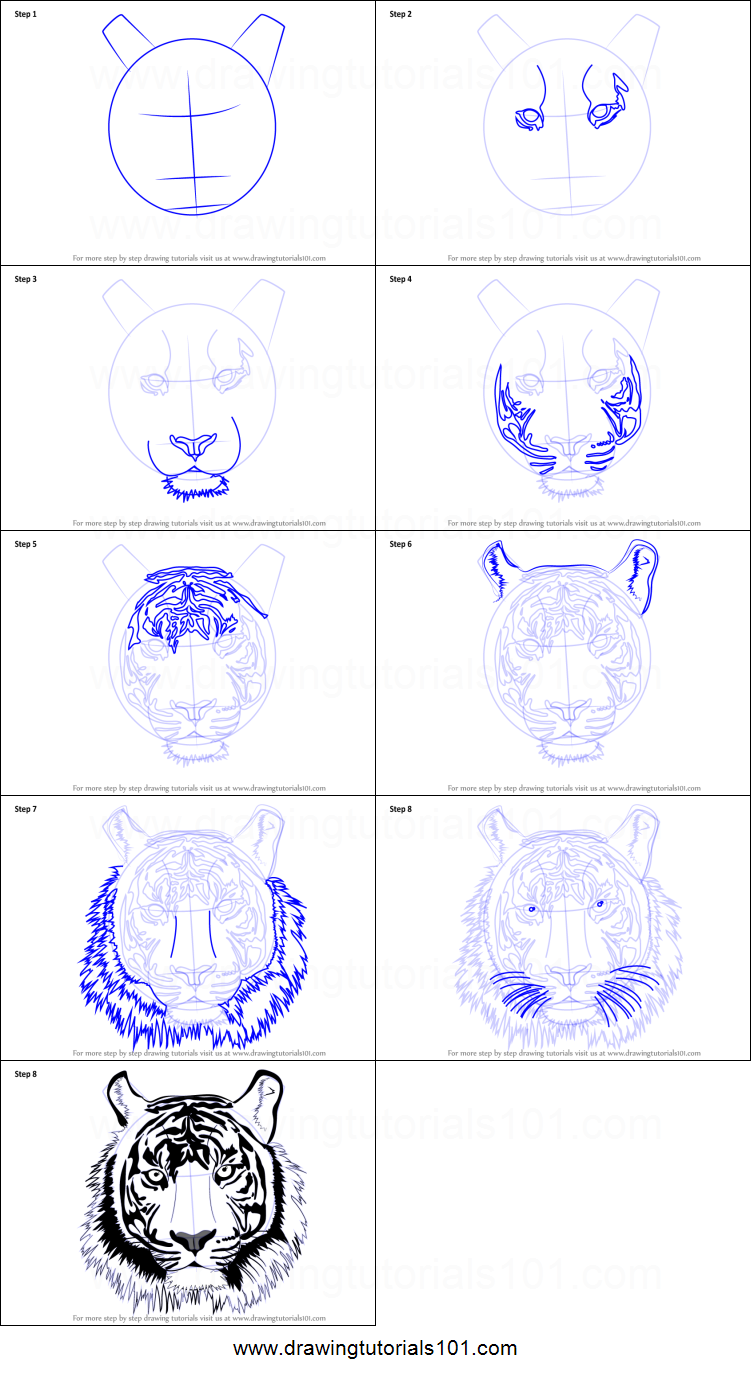 How to Draw a Tiger Face printable step by step drawing ...