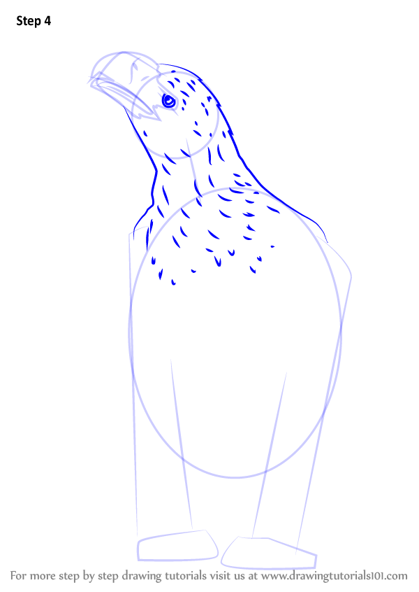 Learn How To Draw An Eagle Sitting (Bird Of Prey) Step By