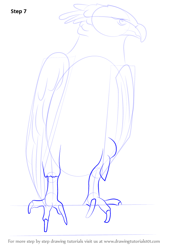 78074 Goodra Pokemon Coloring Page also Seeadler 6581 Pictures moreover World Map For School Coloring Page together with How To Draw A Harpy Eagle as well Id23. on printable pictures of bald eagle