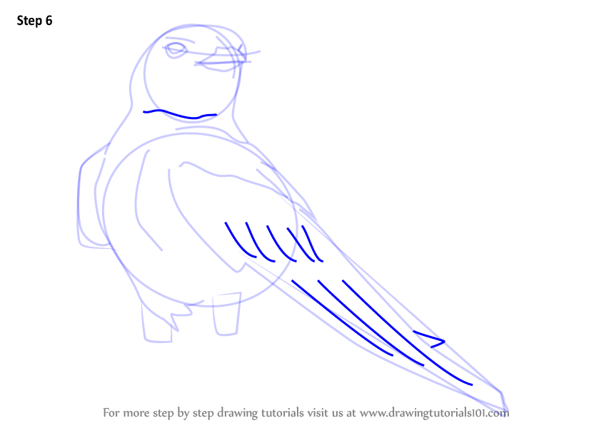 Learn How to Draw an American Cliff Swallow (Birds) Step ...