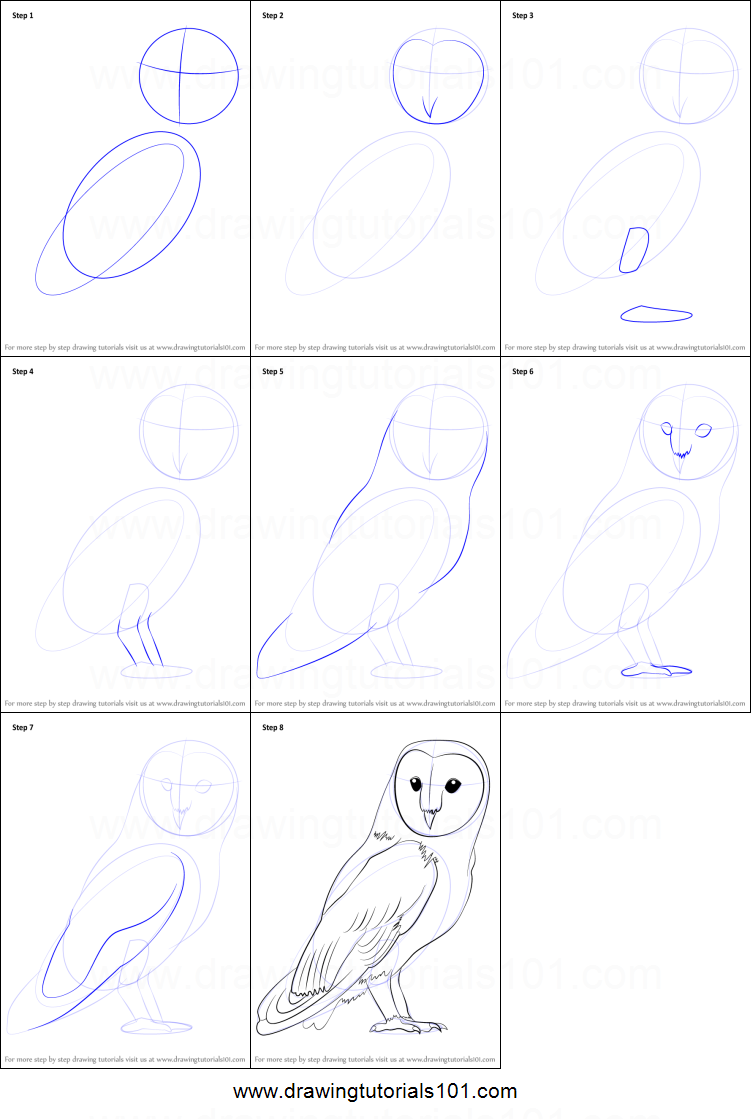 how to draw a barn owl printable step by step drawing