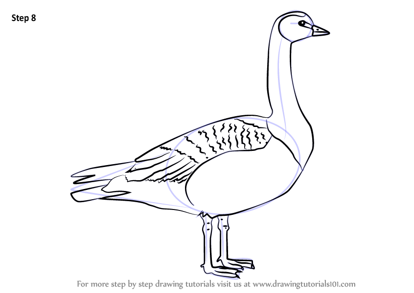 how to draw a goose hunted step by step