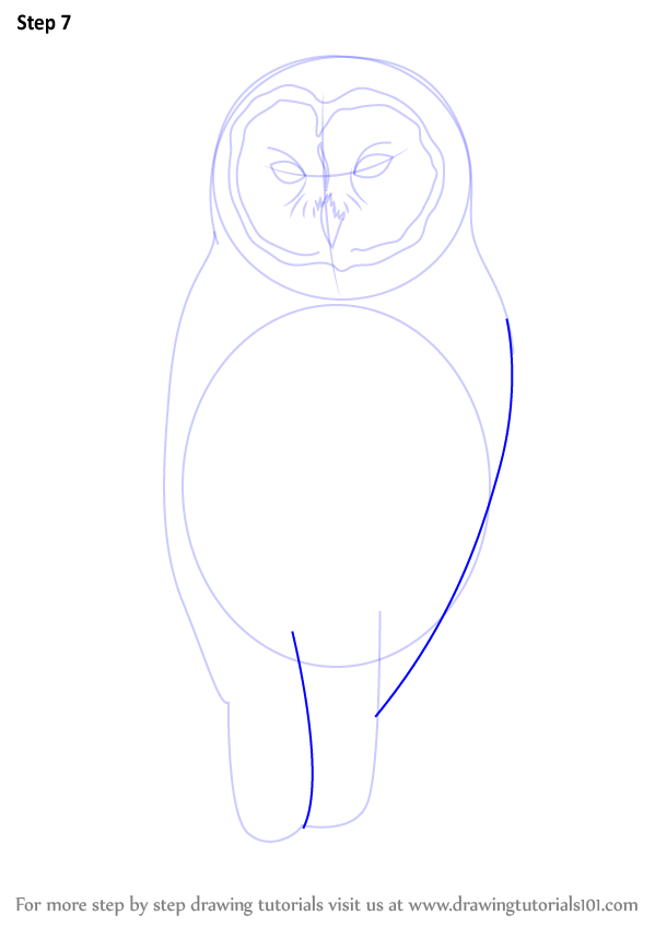 Learn How To Draw A Barred Owl Birds Step By Step