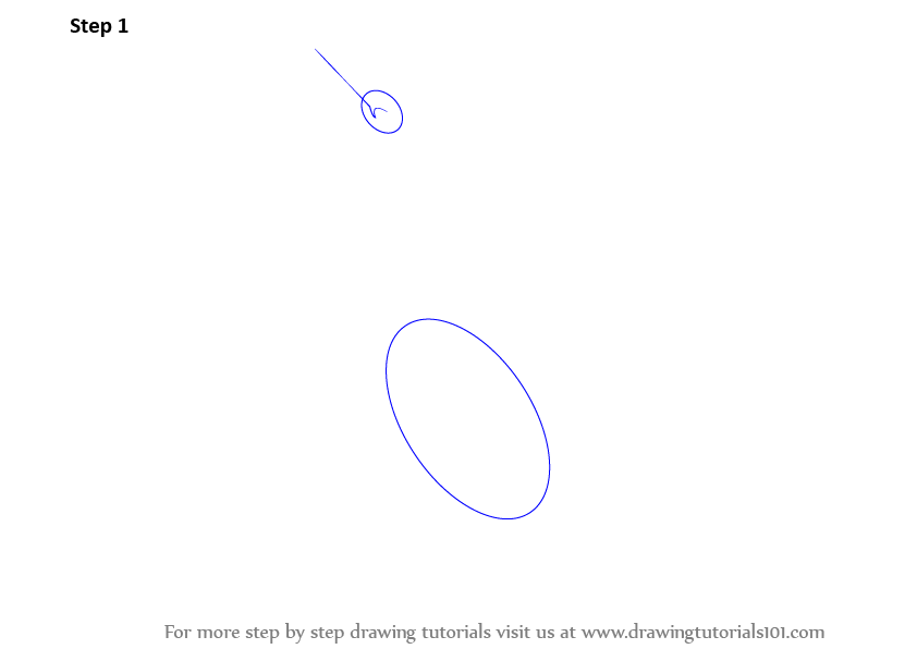 how to draw a lynx step by step easy