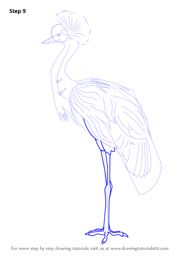how to draw legs from the back