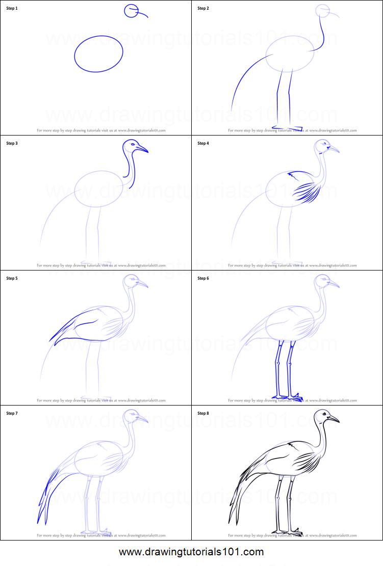 How to draw a blue crane printable step by step drawing for How to draw a crane step by step