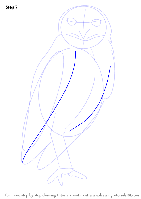 how to draw a flying owl step by step