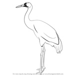 How to Draw a Crane