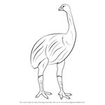How to Draw a Dinornis