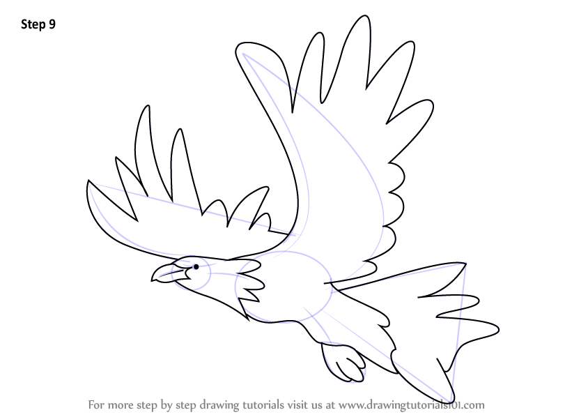 how to draw a mexican eagle