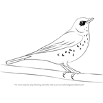How to Draw a Fieldfare