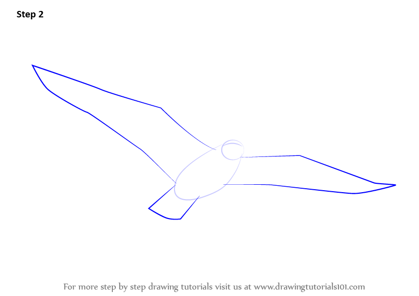 How to draw a flying bird step 1 step 2