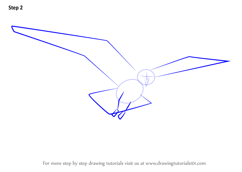 Learn How to Draw a Flying Gull Birds Step by Step