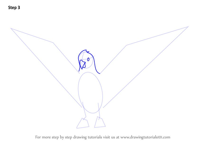 Learn How To Draw A Galah Birds Step By Step Drawing