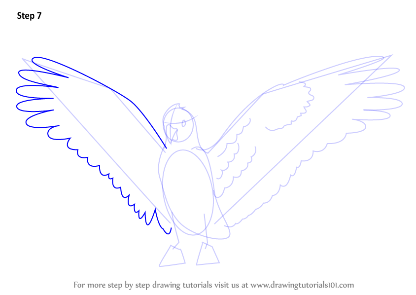 Learn How To Draw A Galah (Birds) Step By Step : Drawing
