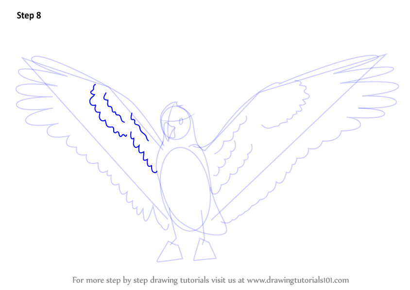 Step By Step How To Draw A Galah DrawingTutorials101
