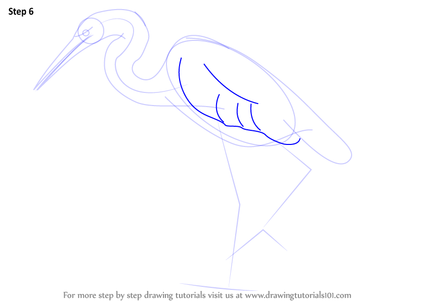 Egret Cartoons: Step By Step How To Draw A Great Egret