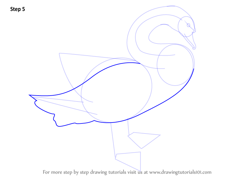 draw outline for body tail