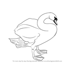 How to Draw a Mute Swan