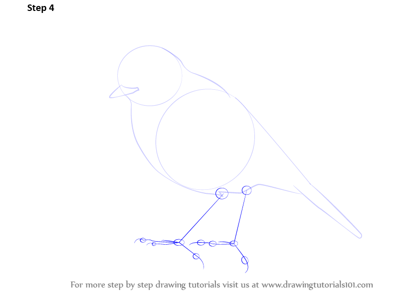 Learn How to Draw a Ro...