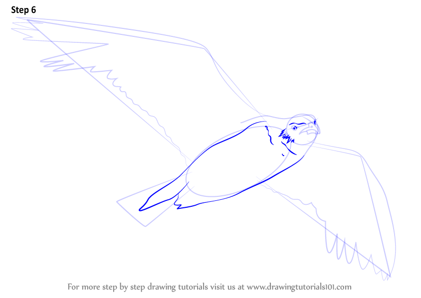 how to draw duck flying step by step