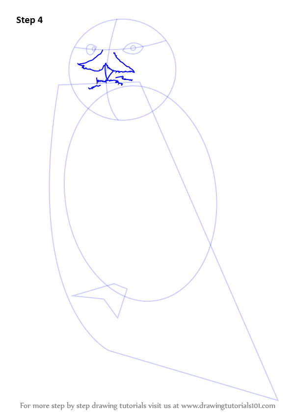 youtube how to draw a snowy owl
