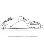 how to draw a cartoon sparrow