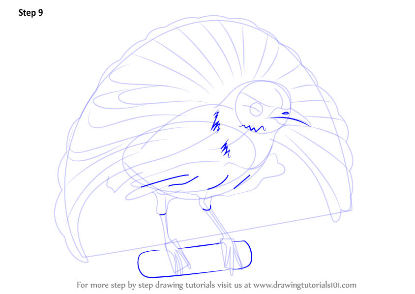 How To Draw A Bird Step By Step For Kids