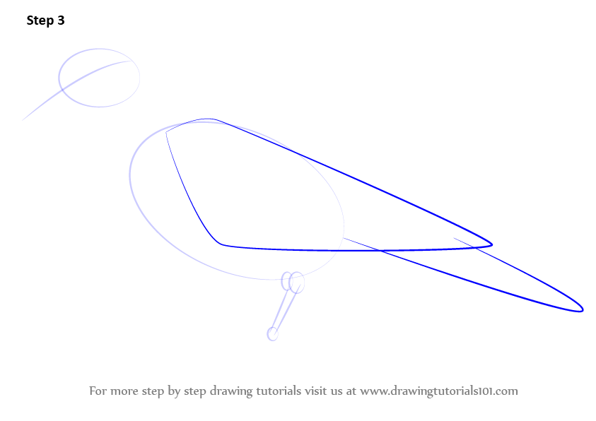 step by step how to draw a dove